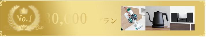 30000円プラン