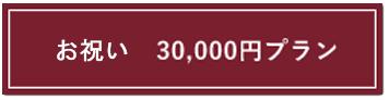 30,000円プランバナー
