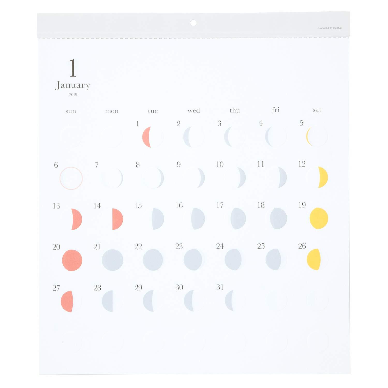 リプラグ 2019年 カレンダー 壁掛 ミチル